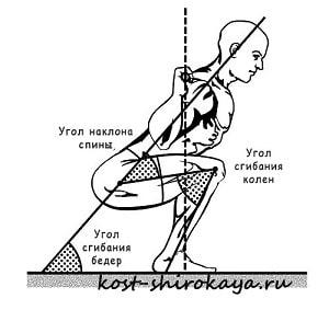 Базовые упражнения; присед; становая; жим лежа.Как сделать талию тонкой