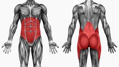Правильная становая тяга, техника выполнения, видео, становая тяга для девушек, боли после становой тяги, чем заменить становую тягу, становая тяга болит поясница спина