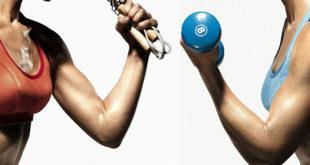 Теория и практика жиросжигания,тренировки для сжигания жира,сжигание подкожного жира,система сжигания жиров,тренировки для похудения,как похудеть
