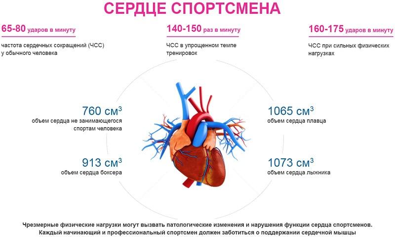 Кардио для сердца,кардио тренировка для сердца,кардио для укрепления сердца,кардио тренировка для укрепления сердца,нужно ли тренировать сердце