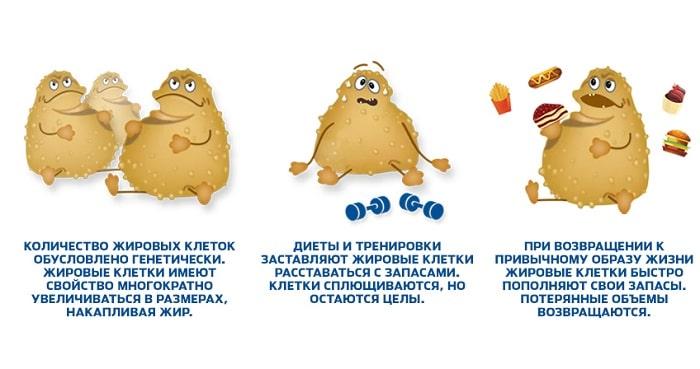 Как правильно похудеть чтобы уходил жир они вода