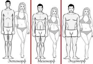 Типы телосложения: Мезоморф, Эктоморф, Эндоморф. Как определить?