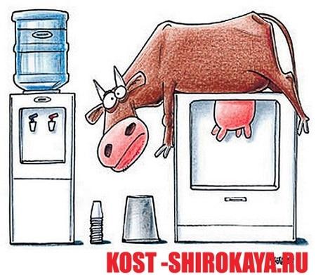 Творог при похудении,отеки от молока,заливает от молочки