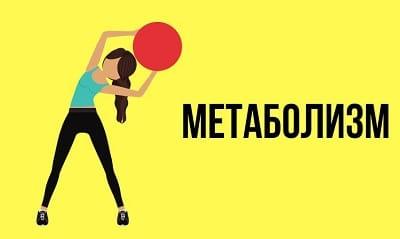 Метаболизм: 2 главнейших заблуждения худеющих об обмене веществ
