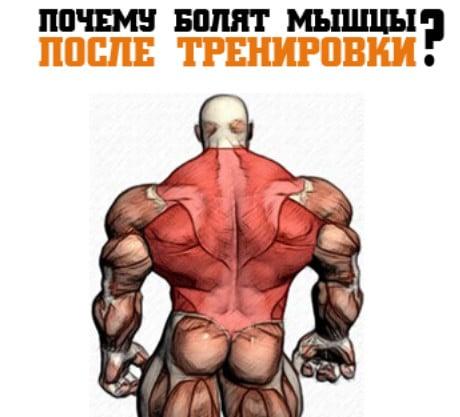 Быстрое и качественное восстановление мышц после тренировки