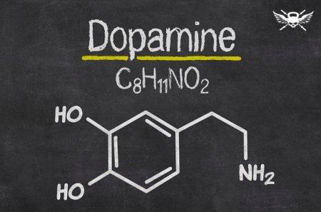 Дофаминовая зависимость: как снять тягу к сладкому. Компульсивное переедание