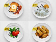 Почему не работает подсчет кбжу: как правильно считать калории, чтобы точно похудеть — 6 секретов подробно с конкретными примерами