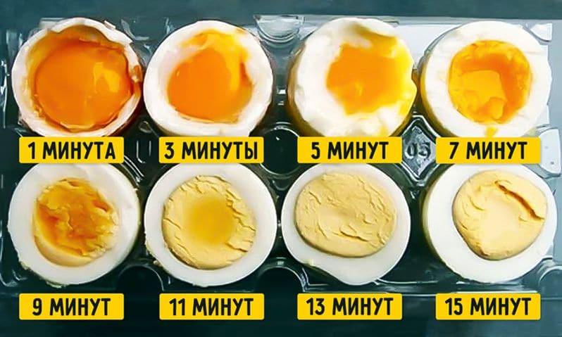 Куриные яйца = повышенный холестерин: изучаем результаты новых научных исследований