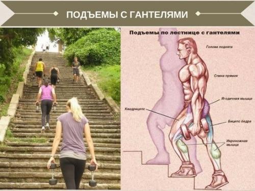По ступенькам к стройной фигуре: ходьба по лестнице для похудения - упражнения, тренировки, отзывы и результаты