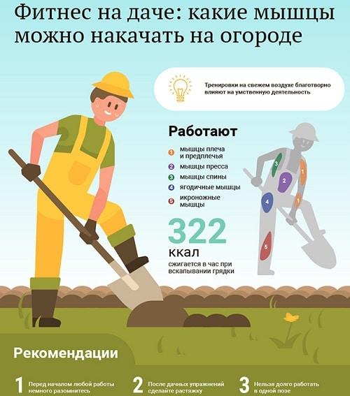 Как правильно копать: 5 условий войны за картошку