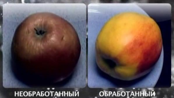 Почему покупные яблоки лучше мыть: подробно, вреден ли воск на фруктах?