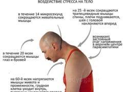 Стресс живет в спине